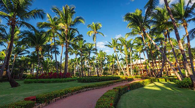 Coral Springs Landscape Design