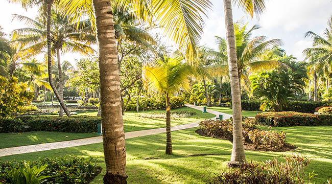 Fort Lauderdale Landscaping