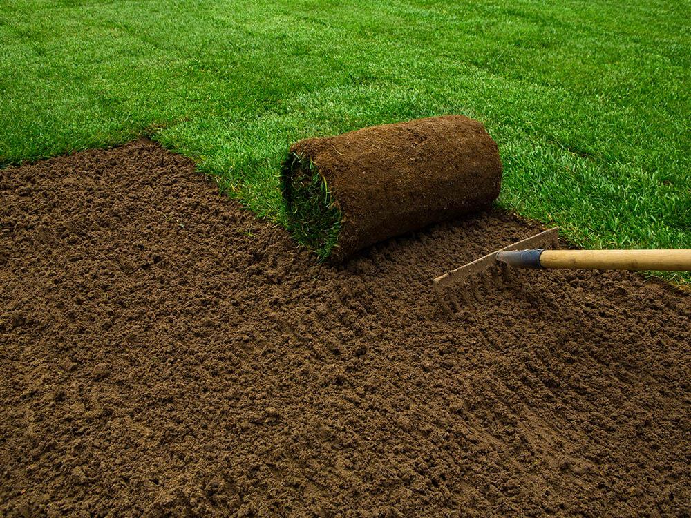 Plantation Sodding