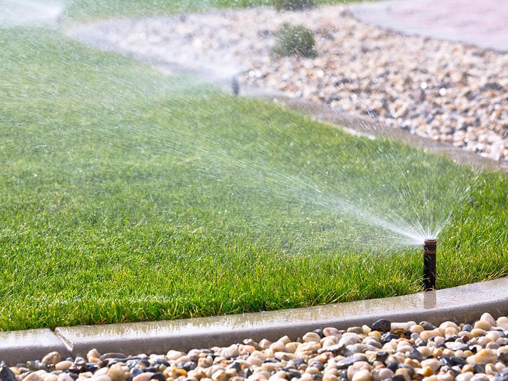 Plantation Irrigation